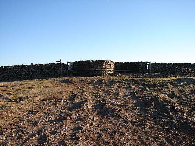 Pen-y-ghent summit - dry stone wall