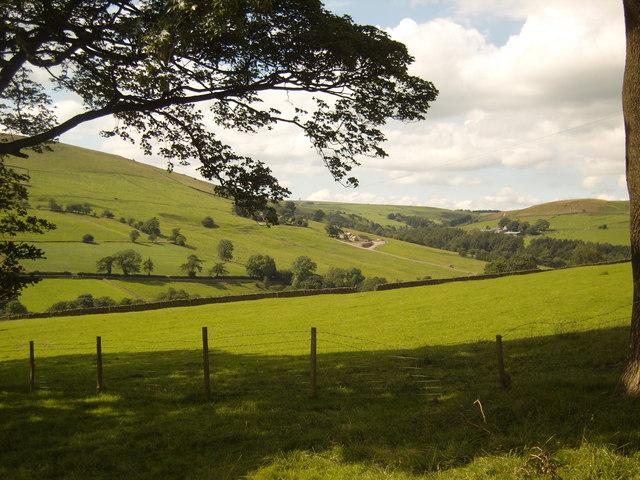 Clough Brook Valley