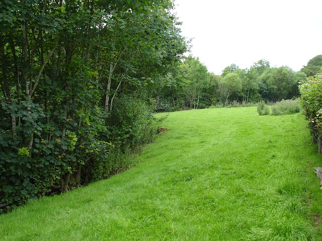 Small field beside the Rhiw