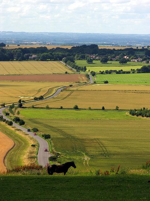 Hackpen Hillside near the Hackpen White Horse