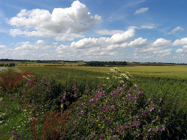 Farmland near Fiddler's Hill