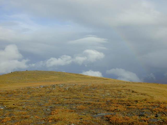 Summit plateau of Moruisg