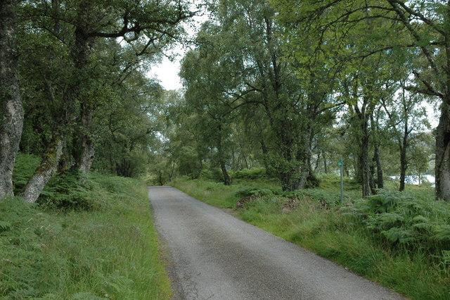 Road round Loch Duntelchaig
