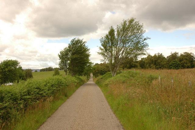 Road near Easterton