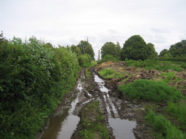 Track leading towards Studley Park