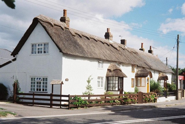 East Knighton: picturesque cottages