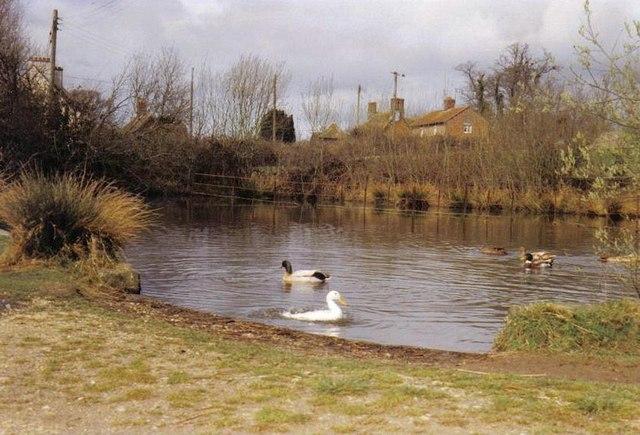 Edmondsham: Upper Farm pond