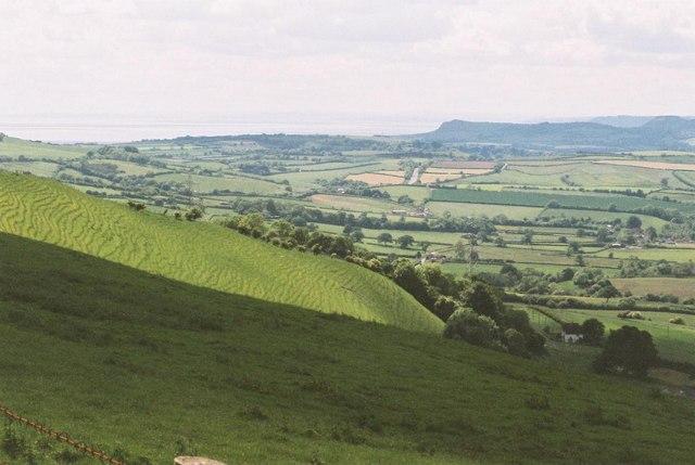 Eggardon Hill: lush slopes and sea view