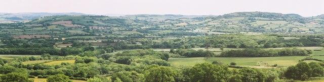 Green view from Eggardon