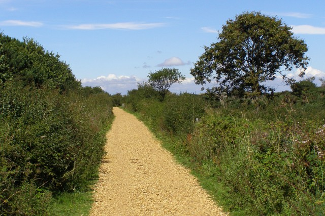 Gravel track to Lower Pennington, Keyhaven Marshes