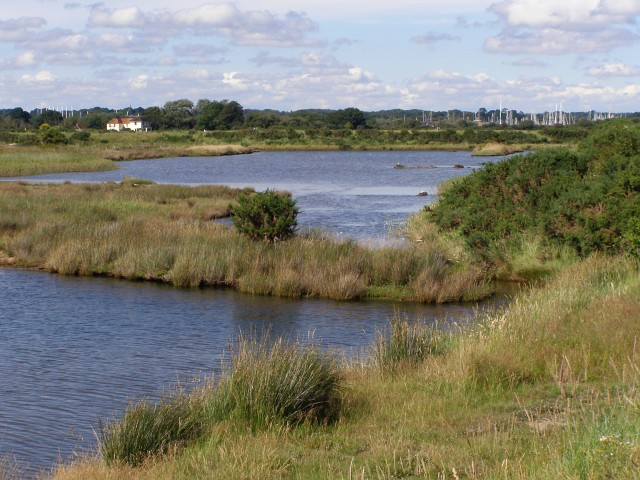 Brackish lagoons north of Moses Dock, Oxey Marsh