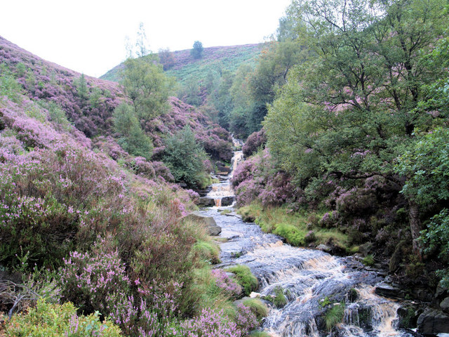 Above the main waterfall middle black clough.