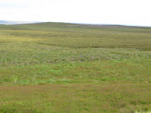 Cuthbert's Hill