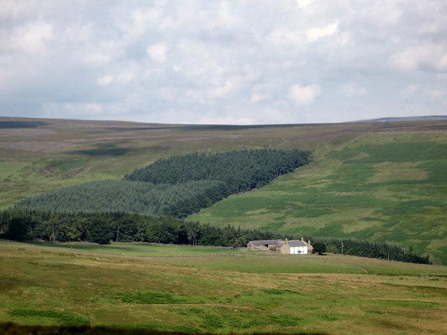 Whitelees Farm and Plantation