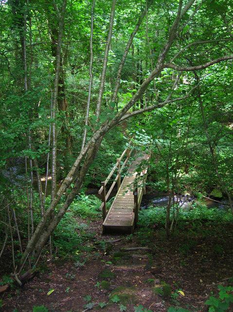Footbridge over the Dudwell, Milkhurst Wood