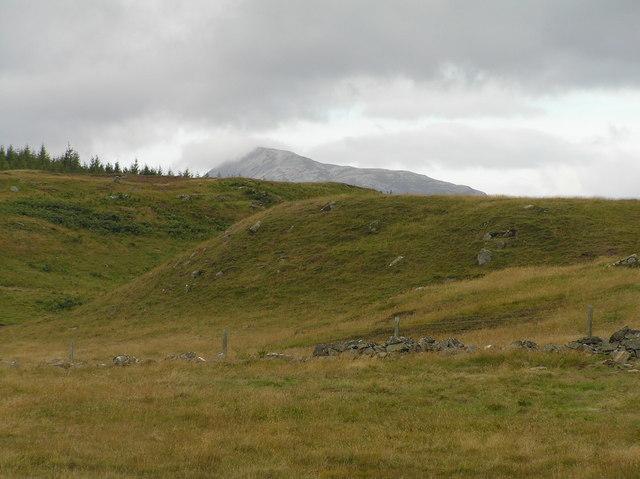 Moorland, with Schiehallion in the background.