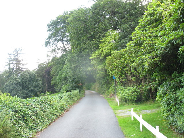 The main drive to Plas Tan y Bwlch