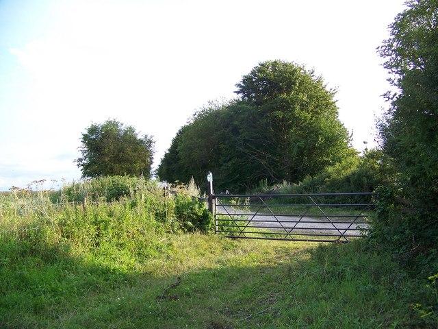 Bridleway near Yews Farm