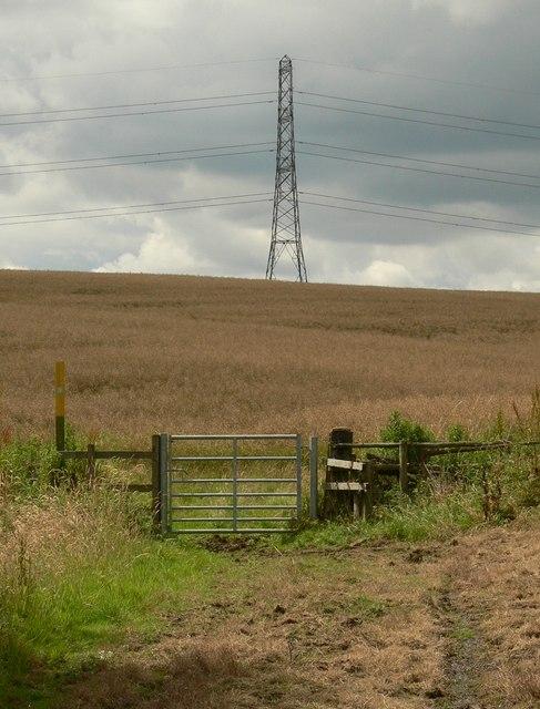 Footpath and pylon