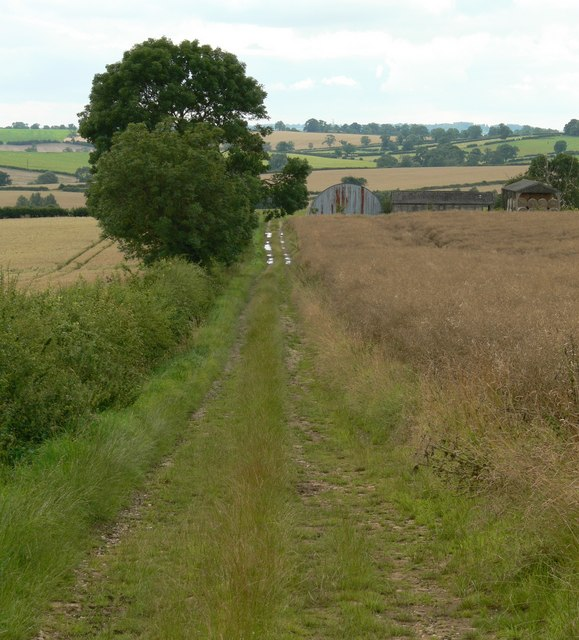 Bridleway from Noseley
