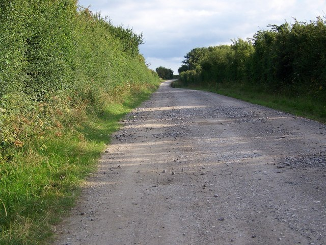 Byway from Odstock to Wick