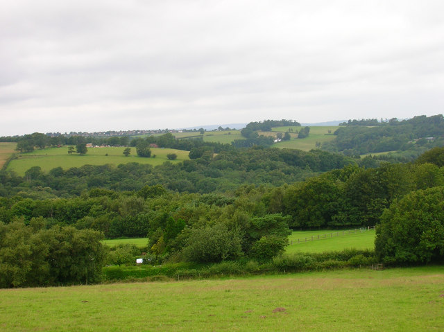 View from Blackdown Hill