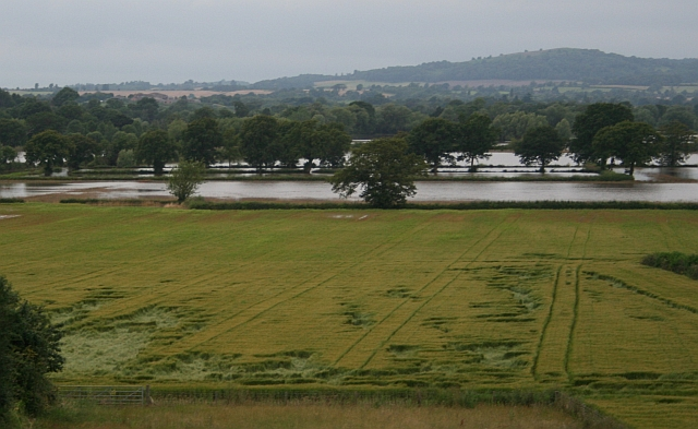 Crop Damage and Flooding near Lower Swell Farm