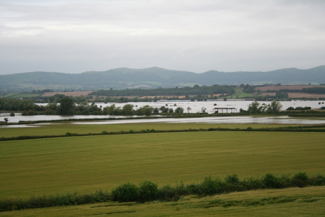 Longdon Marsh