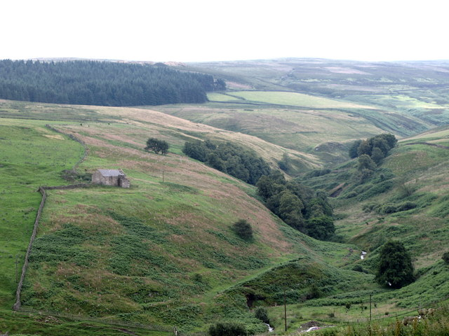 Ellers Hill (cottage), Baxtonlaw Plantation and the valley of Little Nookton Burn