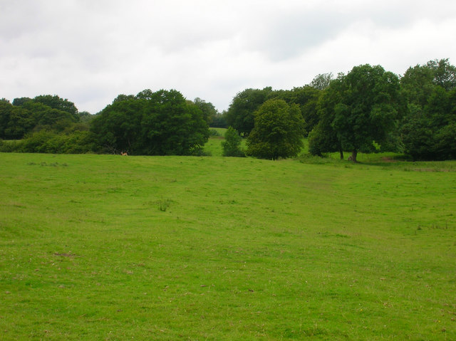 Field near Glazier's Forge