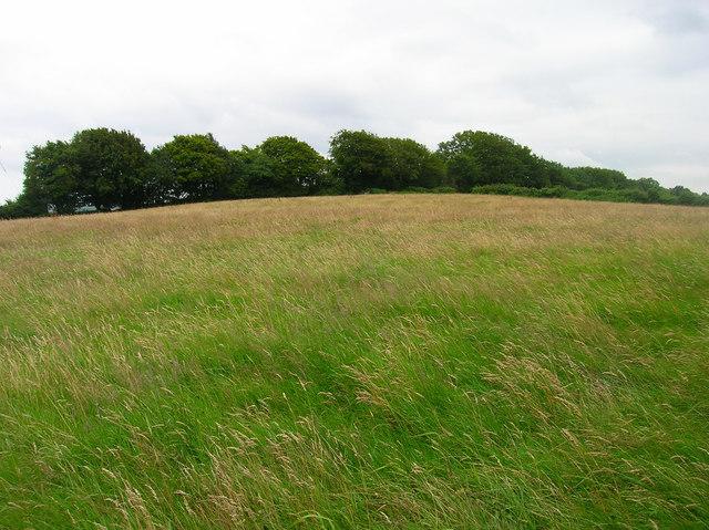 Peak of Park Hill