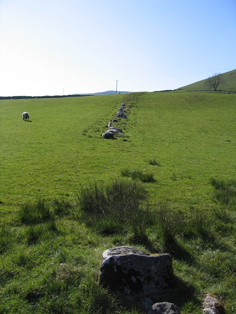 Ruined Field Wall and Pasture