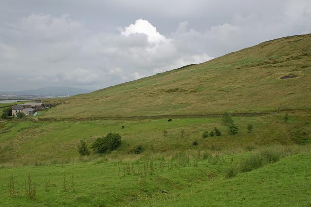 Western slope of Darwen Hill