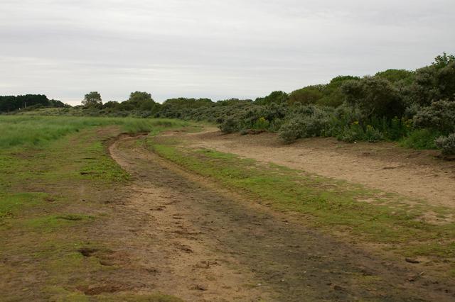 Track beneath the dunes