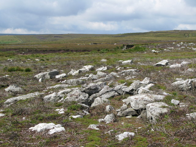 Rocky ground and grouse butts on Uzzles Hill