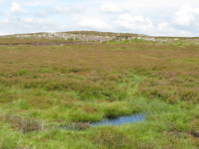 Boggy moorland below Uzzles Hill