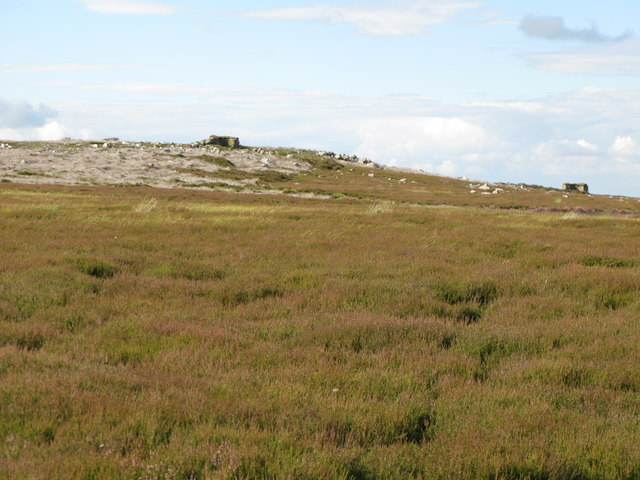 Moorland and grouse butts on Uzzles Hill