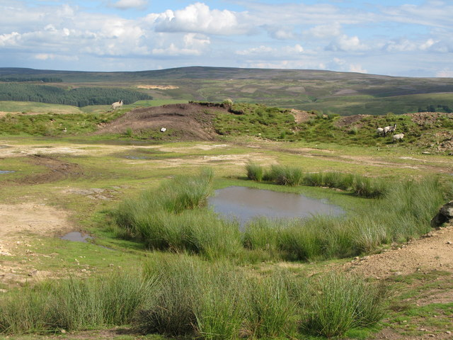 Disused quarry