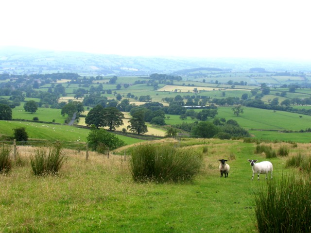 View from the lower slopes of Pendle Hill