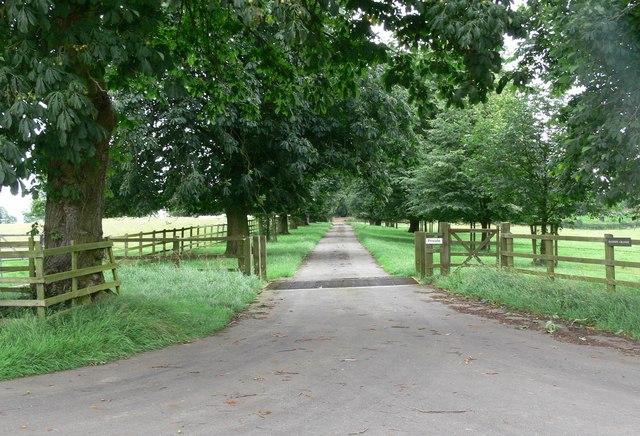 Driveway to Illston Grange
