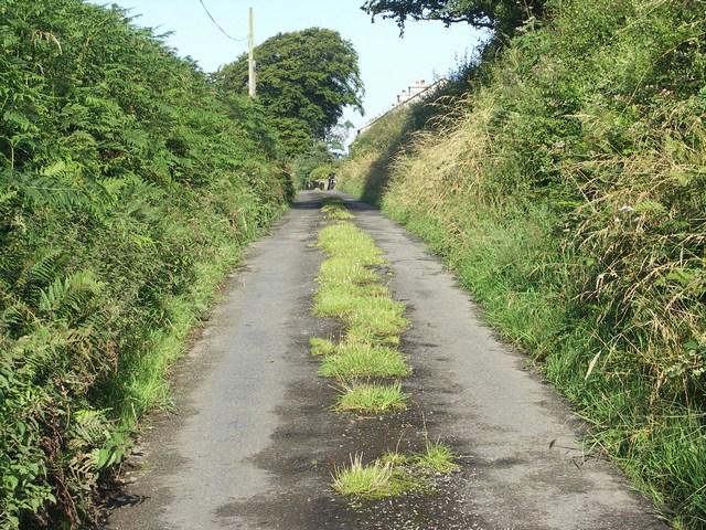 Lane at Longcross
