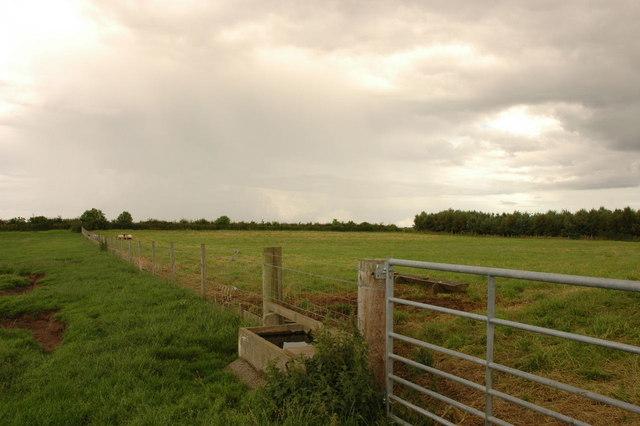 Fields near Loans of Tullich