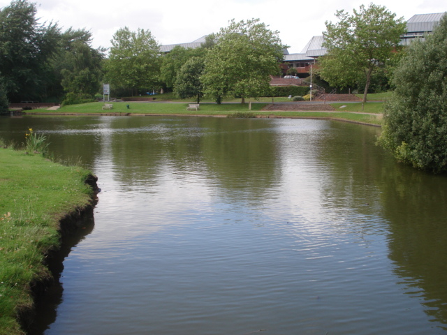 Large pond at County Hall