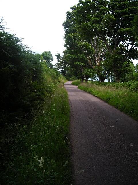 B849 Near Savary