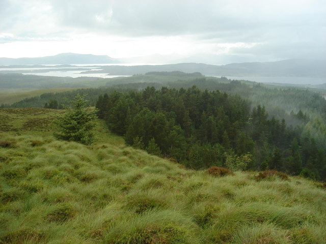 Looking northwest across Barcaldine Forest from Sgorr a Mham-lic