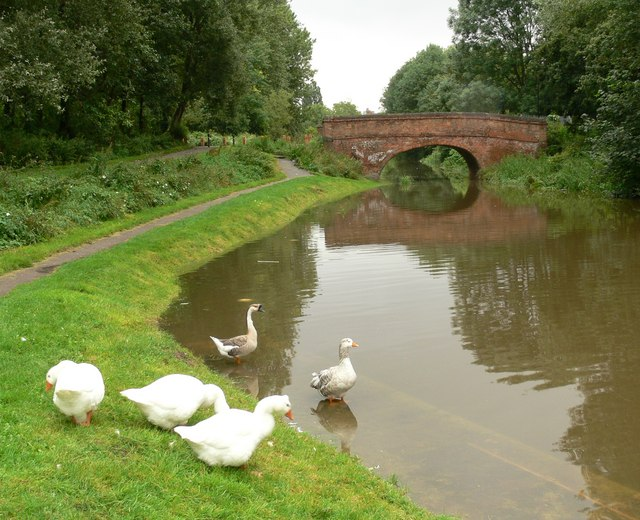 Aylestone Mill Bridge