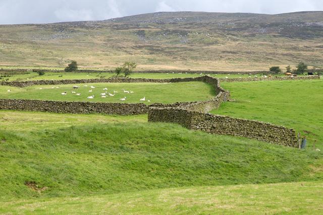 Walled fields