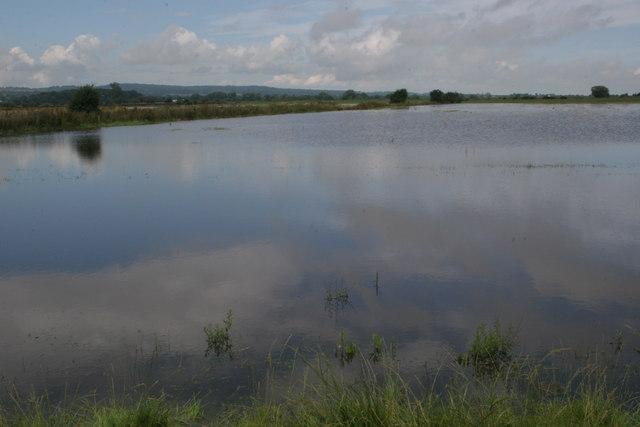 Flooded Burton Meadows
