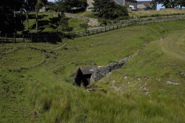 Wolf Hills Culvert