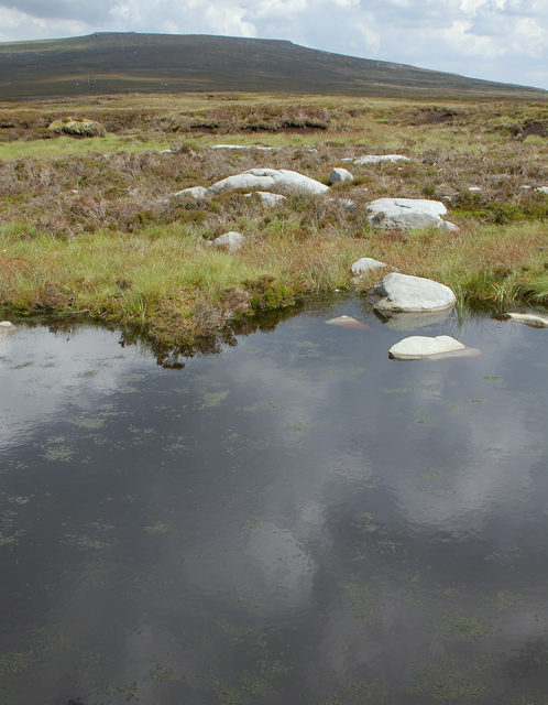 Small pond on Cabin Flat